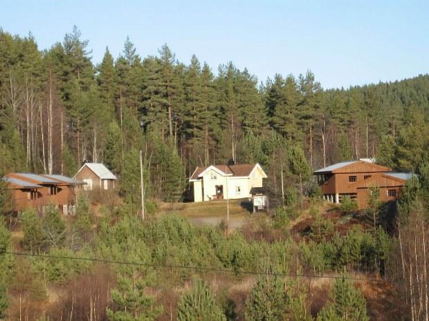 Hüttendorf mitten im Wald