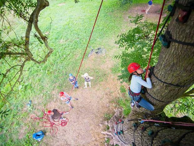 Baumklettern mit Seil in der Natur