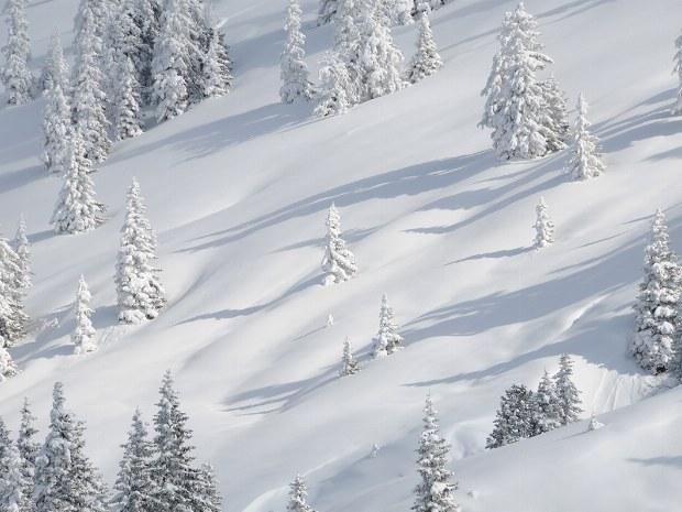 Schneelandschaft im Winter in Kitzbühel