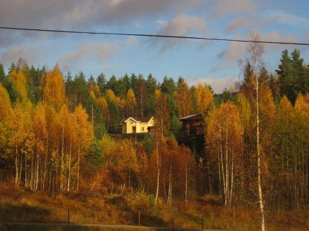 Hüttendorf in der herbstlichen Idylle von Norwegen