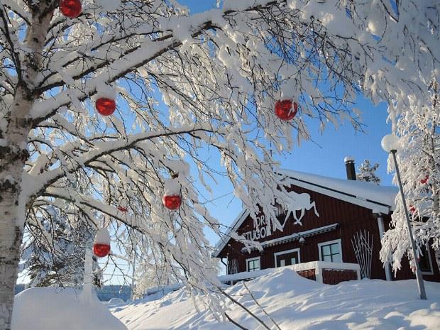 Winterwunderland in Schweden